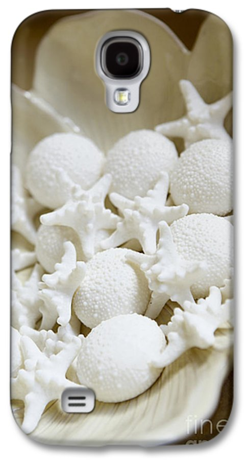 Bowl Galaxy S4 Case featuring the photograph Decorative Seashells by Kyle Rothenborg - Printscapes