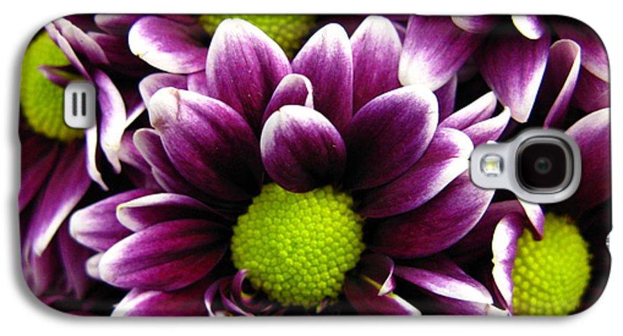 Purple Galaxy S4 Case featuring the photograph Delicate Purple by Rhonda Barrett