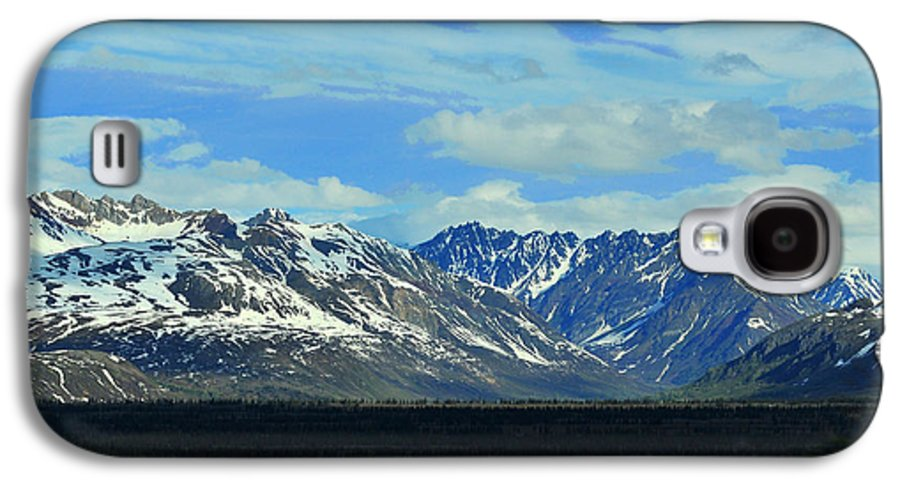 Denali Galaxy S4 Case featuring the photograph Denali Valley by Keith Gondron