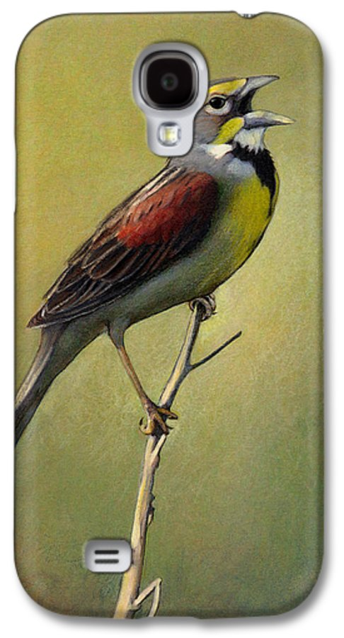 Birds Galaxy S4 Case featuring the drawing Dickcissel Summer Song by Bruce Morrison