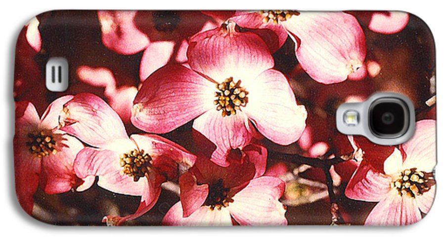 Dogwood Galaxy S4 Case featuring the photograph Dogwood Harmony by Nancy Mueller