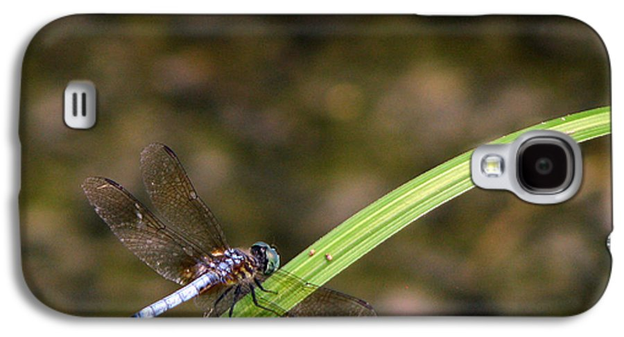 Dragonfly Galaxy S4 Case featuring the photograph Dragonfly by Amanda Barcon