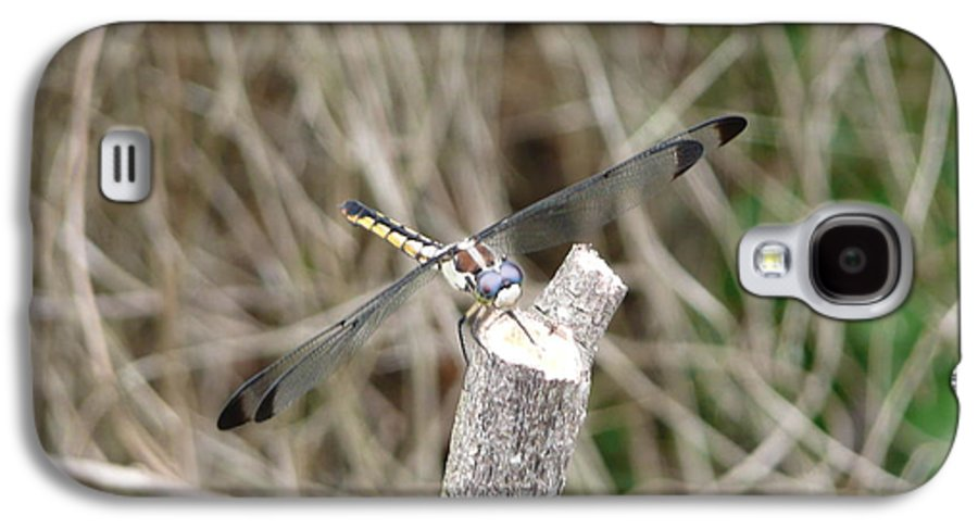 Wildlife Galaxy S4 Case featuring the photograph Dragonfly I by Kathy Schumann