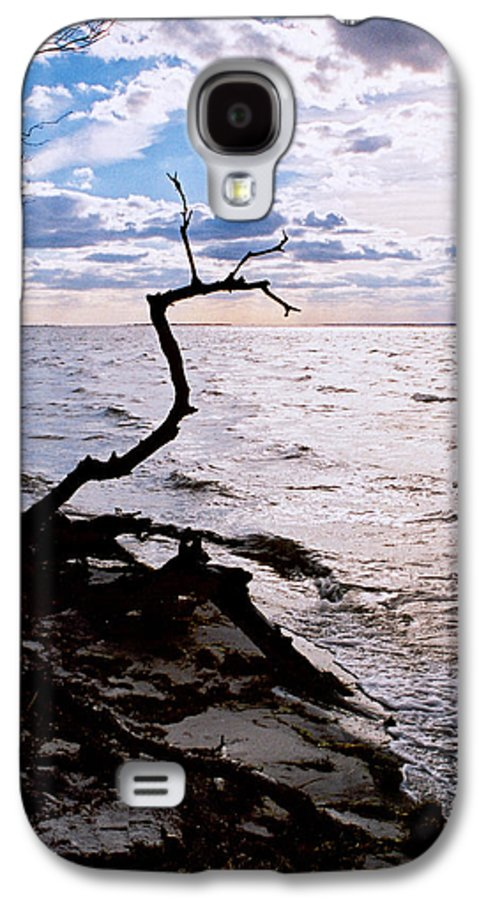 Barnegat Galaxy S4 Case featuring the photograph Driftwood Dragon-barnegat Bay by Steve Karol