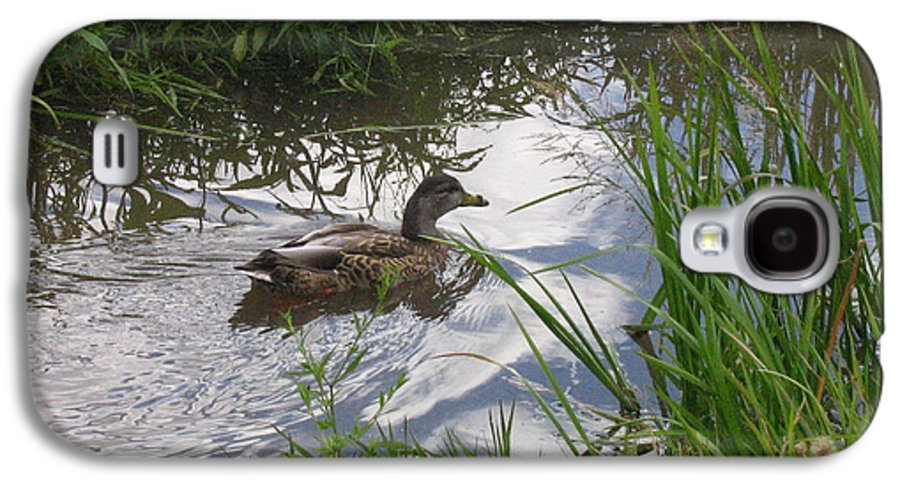 Duck Galaxy S4 Case featuring the photograph Duck Swimming In Stream by Melissa Parks