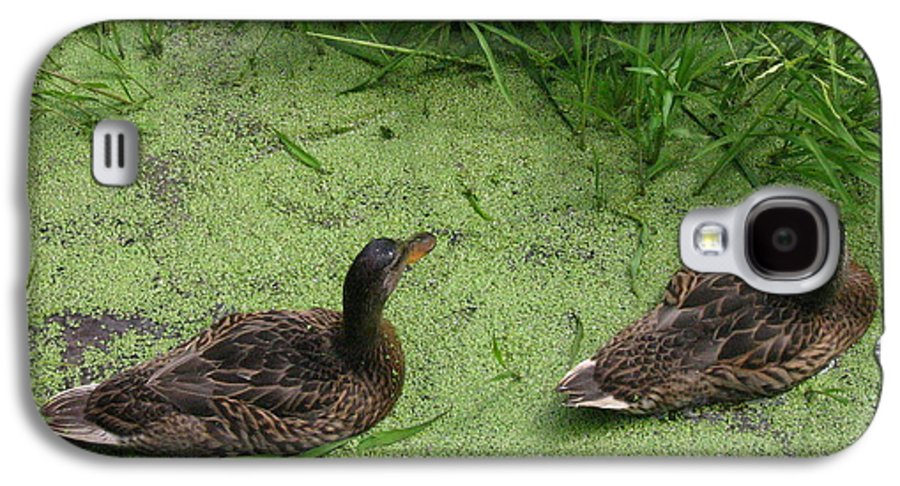 Duck Galaxy S4 Case featuring the photograph Ducks In Pond by Melissa Parks