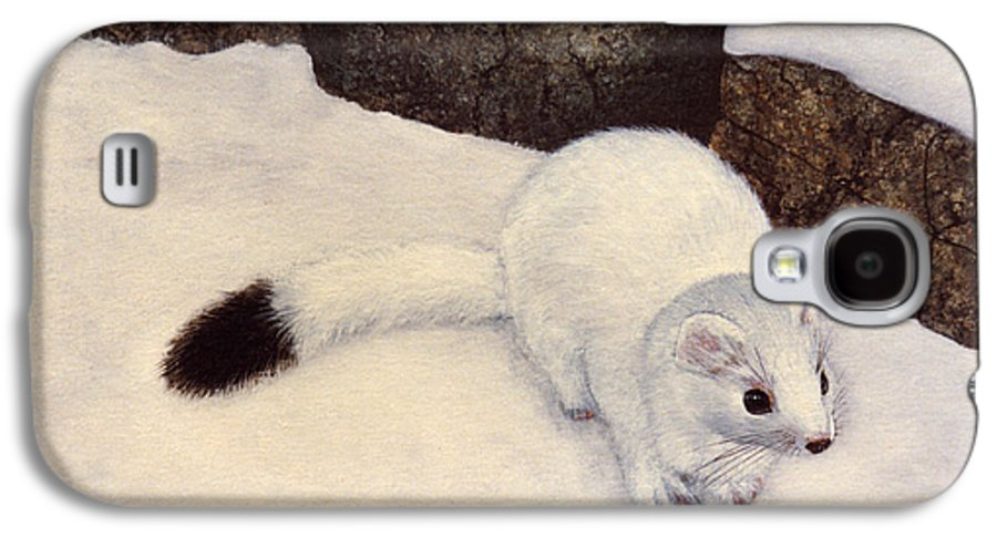 Wildlife Galaxy S4 Case featuring the painting Ermine In Winter by Frank Wilson