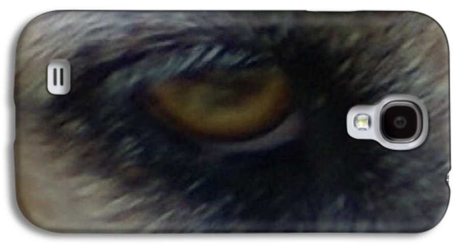 Eyes Galaxy S4 Case featuring the photograph Eye Of The Beholder by Debbie May