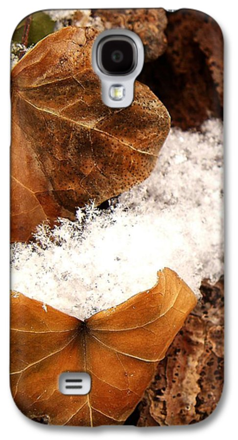 Fall Galaxy S4 Case featuring the photograph Fall And Winter by Gaby Swanson