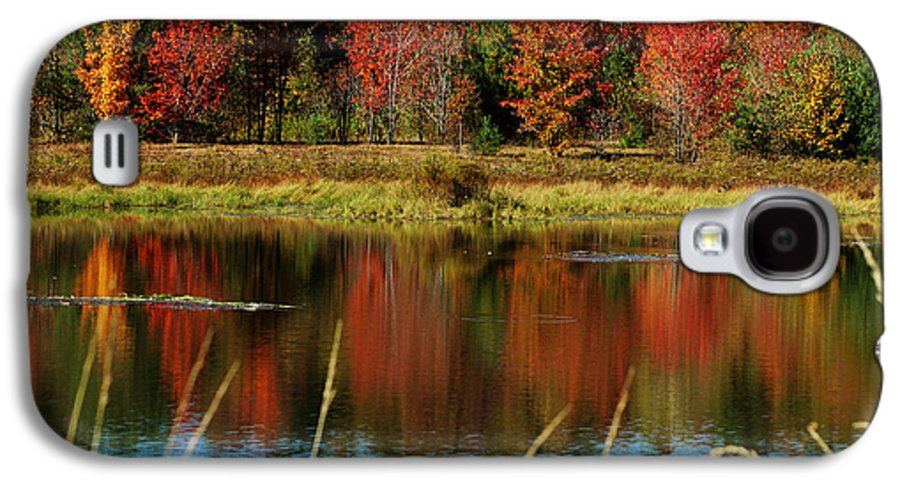 Autumn Galaxy S4 Case featuring the photograph Fall Splendor by Linda Murphy
