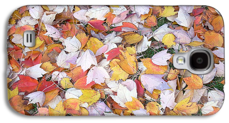 Photography Fall Autum Leaves Galaxy S4 Case featuring the photograph Fallen Fantasy by Karin Dawn Kelshall- Best