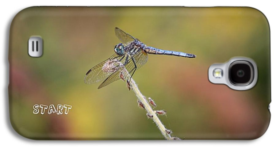 Dragonfly Art Galaxy S4 Case featuring the photograph Feel Young Again by Carol Groenen