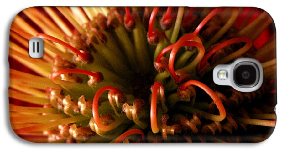 Protea Galaxy S4 Case featuring the photograph Flower Hawaiian Protea by Nancy Griswold
