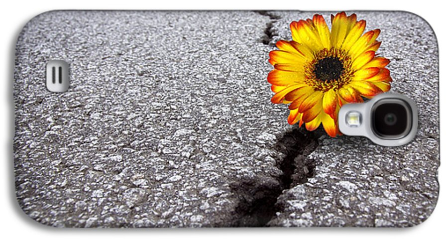 Abstract Galaxy S4 Case featuring the photograph Flower In Asphalt by Carlos Caetano