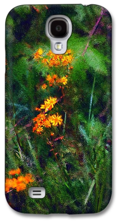 Digital Photography Galaxy S4 Case featuring the digital art Flowers In The Woods At The Haciendia by David Lane