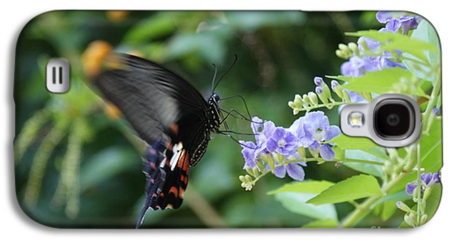Butterfly Galaxy S4 Case featuring the photograph Fly In Butterfly by Shelley Jones