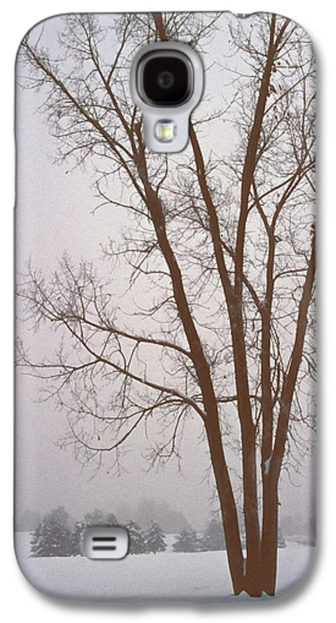 Nature Galaxy S4 Case featuring the photograph Foggy Morning Landscape 13 by Steve Ohlsen