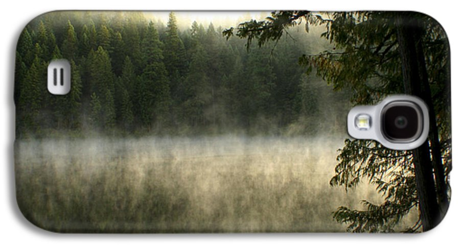 Fog Galaxy S4 Case featuring the photograph Forest And Fog by Idaho Scenic Images Linda Lantzy