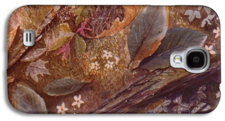 Leaves; Forest; Flowers Galaxy S4 Case featuring the painting Forest Floor by Ben Kiger