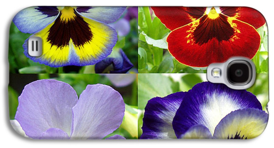 Pansy Galaxy S4 Case featuring the photograph Four Pansies by Nancy Mueller