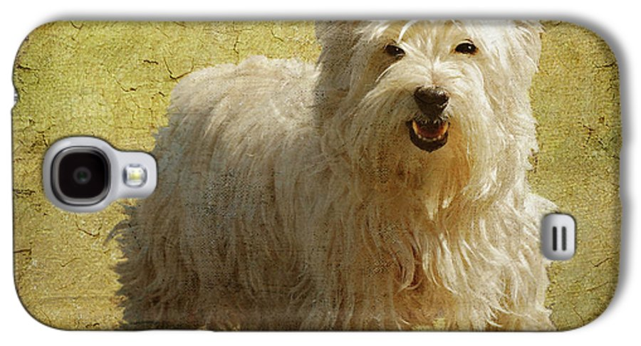 Dogs Galaxy S4 Case featuring the photograph Friendly Smile by Lois Bryan