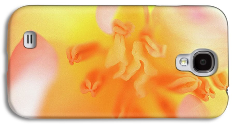 Internal Beauty Of A Tulip Galaxy S4 Case featuring the photograph From The Heart by Bill Morgenstern