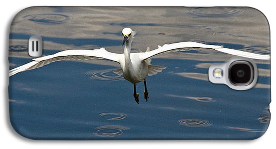 Snowy Egret Galaxy S4 Case featuring the photograph Gear Down by Christopher Holmes