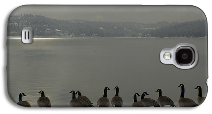Geese Galaxy S4 Case featuring the photograph Geese On The Edge by Idaho Scenic Images Linda Lantzy