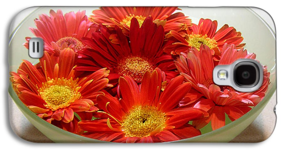 Nature Galaxy S4 Case featuring the photograph Gerbera Daisies - A Bowl Full by Lucyna A M Green