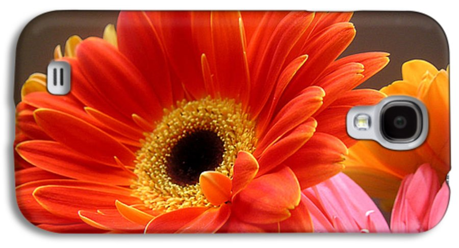 Nature Galaxy S4 Case featuring the photograph Gerbera Daisies - Luminous by Lucyna A M Green