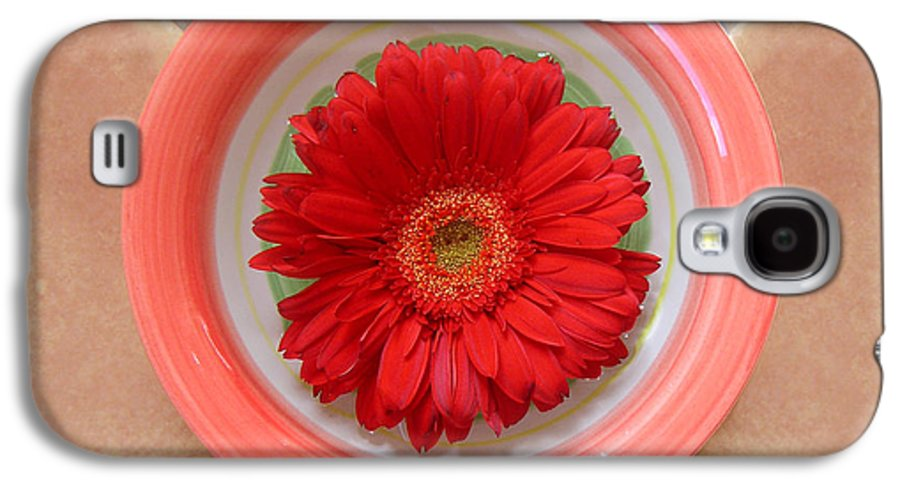 Nature Galaxy S4 Case featuring the photograph Gerbera Daisy - Bowled On Tile by Lucyna A M Green