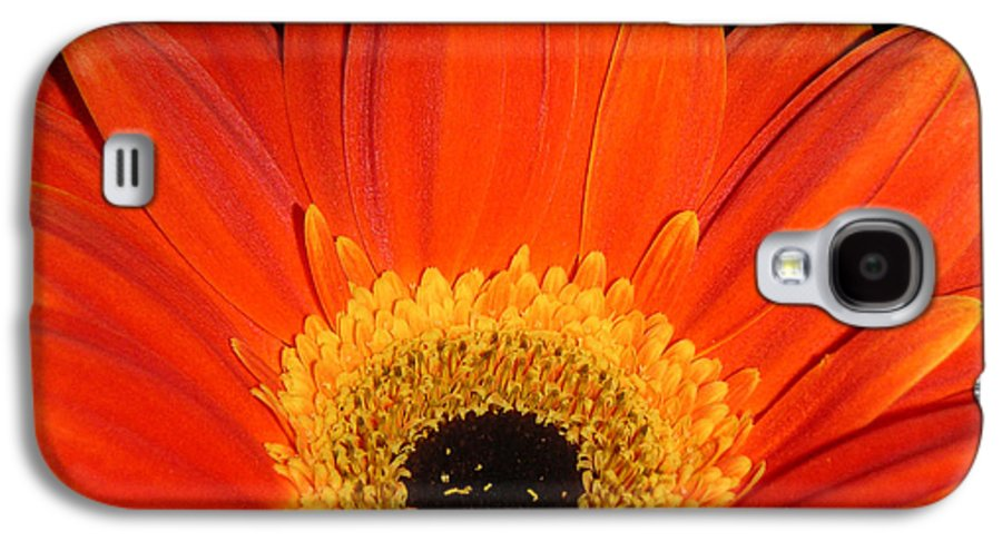Nature Galaxy S4 Case featuring the photograph Gerbera Daisy - Glowing In The Dark by Lucyna A M Green