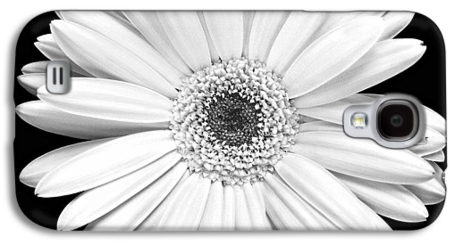 Gerber Galaxy S4 Case featuring the photograph Single Gerbera Daisy by Marilyn Hunt