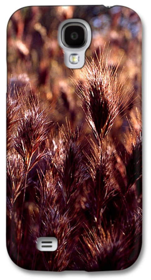 Nature Galaxy S4 Case featuring the photograph Gideon by Randy Oberg