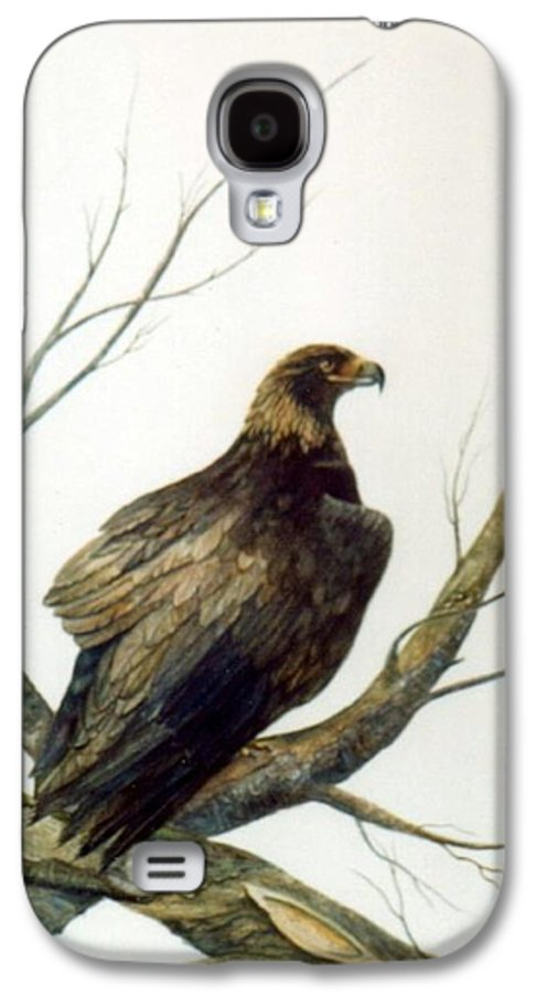 Eagle Galaxy S4 Case featuring the painting Golden Eagle by Ben Kiger
