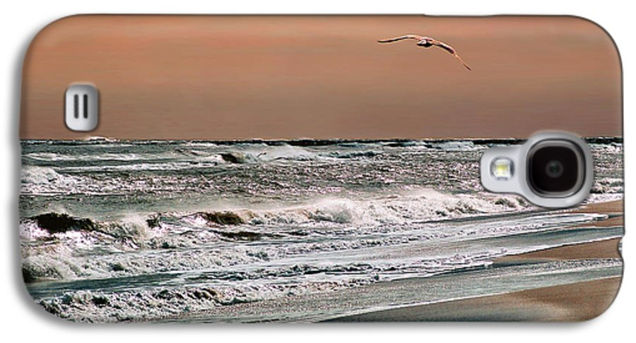 Seascape Galaxy S4 Case featuring the photograph Golden Shore by Steve Karol