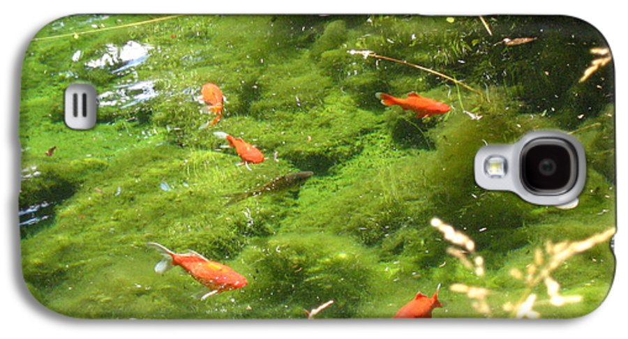 Goldfish Galaxy S4 Case featuring the photograph Goldfish In A Pond by Melissa Parks