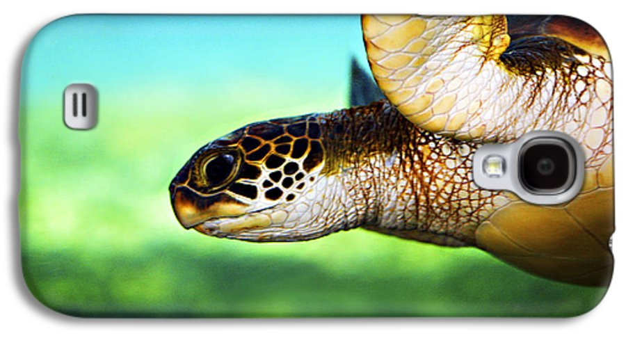 Green Galaxy S4 Case featuring the photograph Green Sea Turtle by Marilyn Hunt