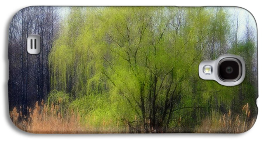 Scenic Art Galaxy S4 Case featuring the photograph Green Tree by Linda Sannuti