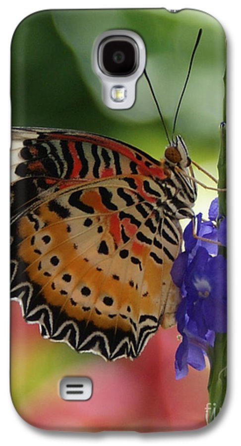 Butterfly Galaxy S4 Case featuring the photograph Hanging On by Shelley Jones