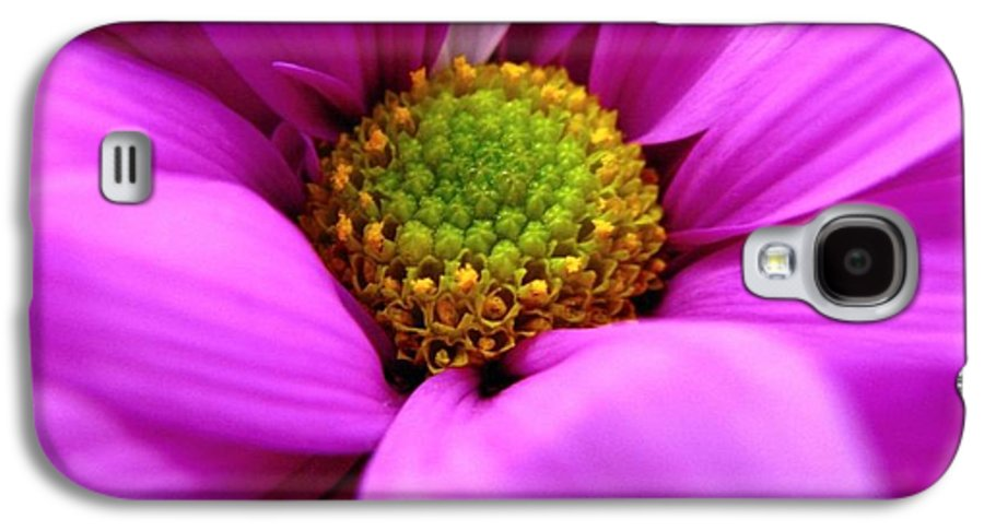 Flower Galaxy S4 Case featuring the photograph Hidden Inside by Rhonda Barrett