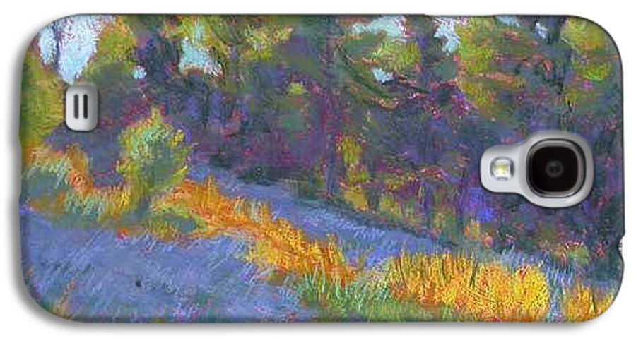View Of Hillside And Evening Shadows Galaxy S4 Case featuring the painting Hillside Shadows by Julie Mayser