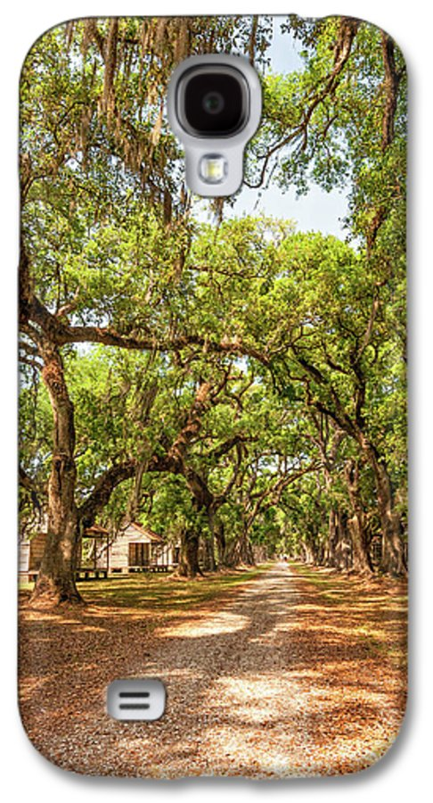 Evergreen Plantation Galaxy S4 Case featuring the photograph Historic Lane by Steve Harrington
