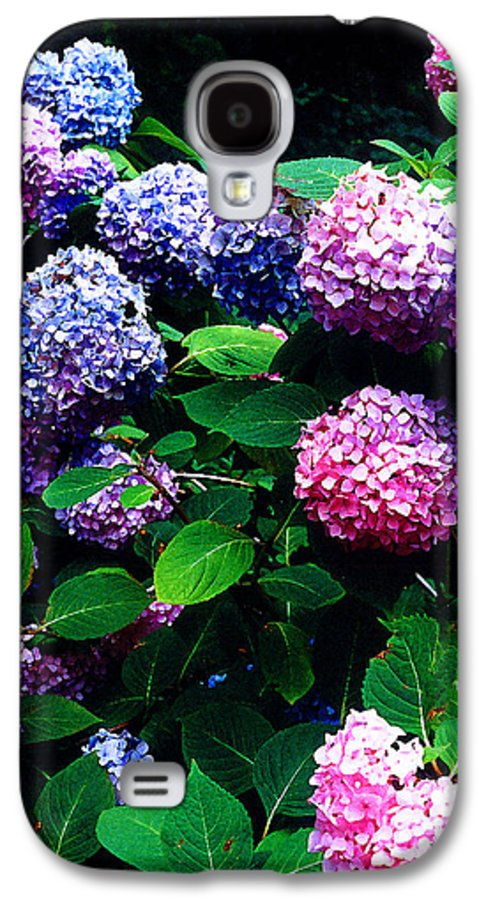 Flowers Galaxy S4 Case featuring the photograph Hydrangeas by Nancy Mueller