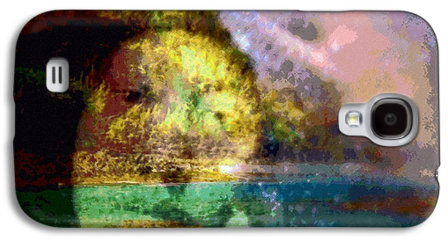 Tropical Interior Design Galaxy S4 Case featuring the photograph I Ini O Ka Naau by Kenneth Grzesik