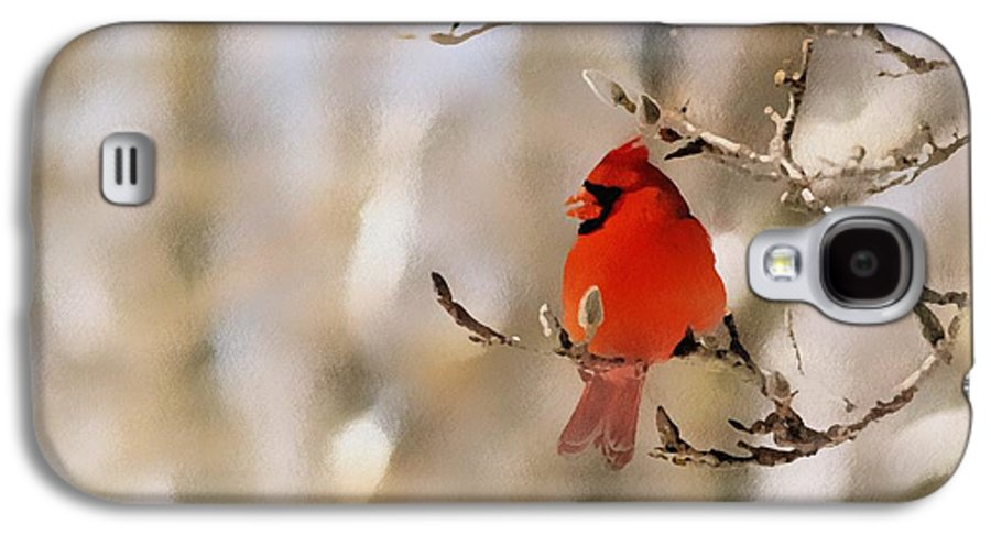 Cardinal Galaxy S4 Case featuring the photograph In Red by Gaby Swanson