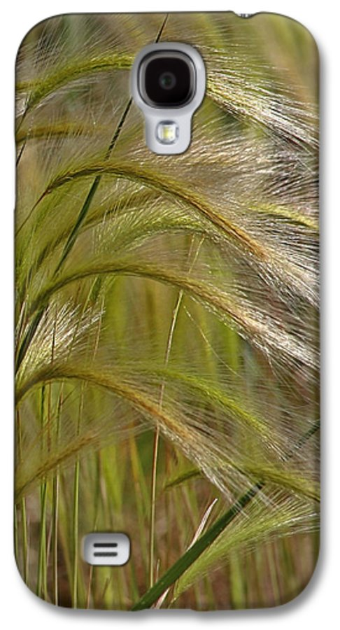 Grass Galaxy S4 Case featuring the photograph Indiangrass Swaying Softly With The Wind by Christine Till