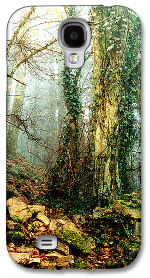 Ivy Galaxy S4 Case featuring the photograph Ivy In The Woods by Nancy Mueller