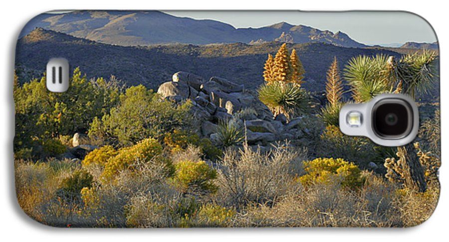 Sunset Galaxy S4 Case featuring the photograph Joshua Tree National Park In California by Christine Till