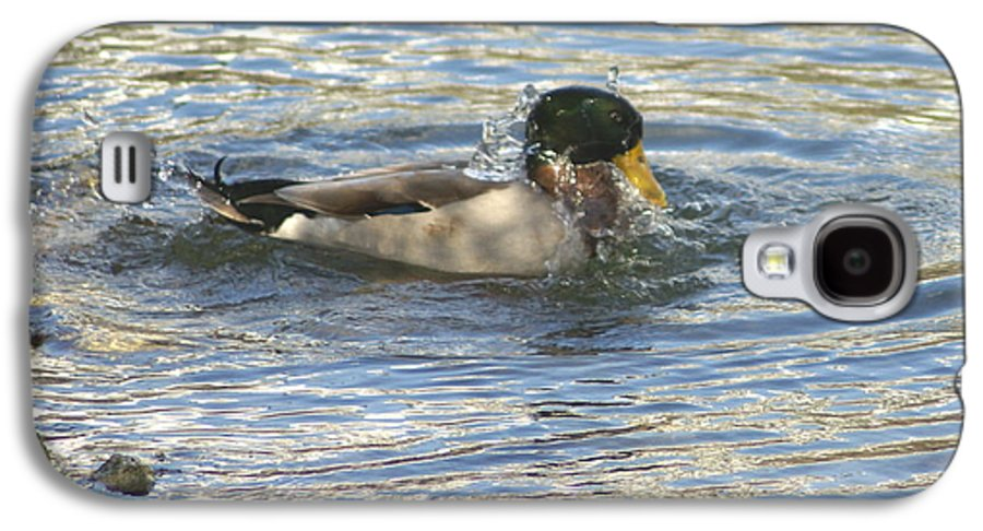 Ducks Galaxy S4 Case featuring the photograph Just Ducking Around by Debbie May